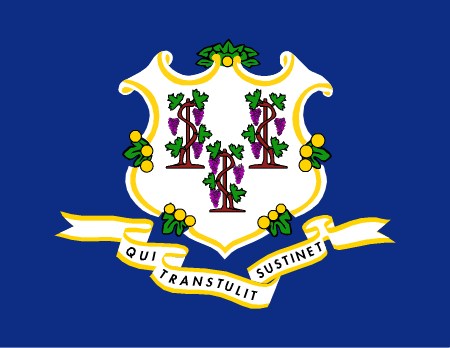 connecticut flag graphic