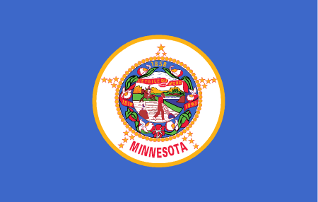 minnesota flag graphic