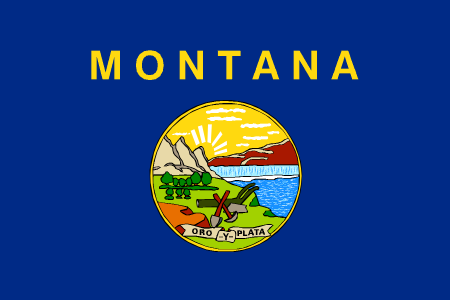 montana flag graphic