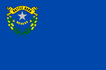 nevada flag graphic