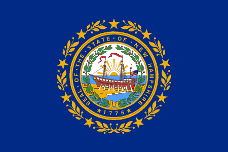 new hampshire flag graphic