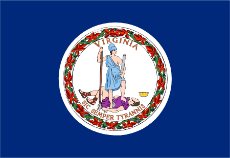 virginia flag graphic