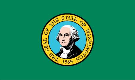 washington flag graphic